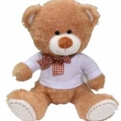 TEDDY WITH SHIRT